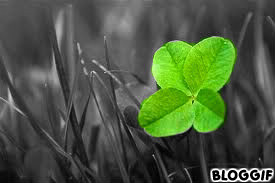 Bonne chance! dans Accueil bloggif_5117986623509